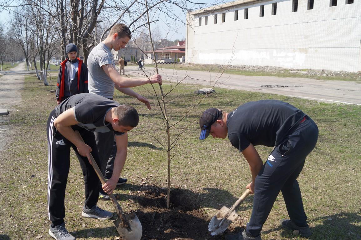 """Щорічна Всеукраїнська екологічна акція """"Зелена толока"""" триває!"""